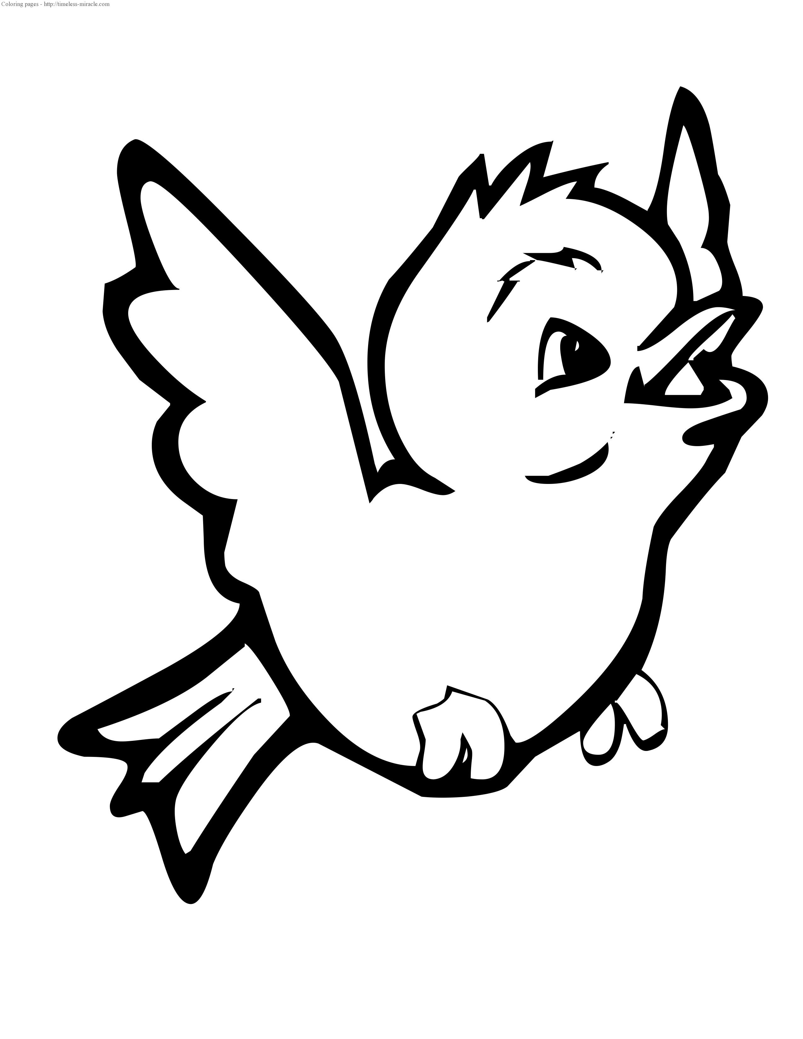 Baby bird coloring page timelessmiracle