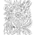 Free coloring pages adults