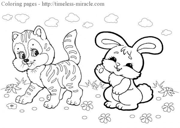 Coloring sheet Cat  coloring page free (printables)