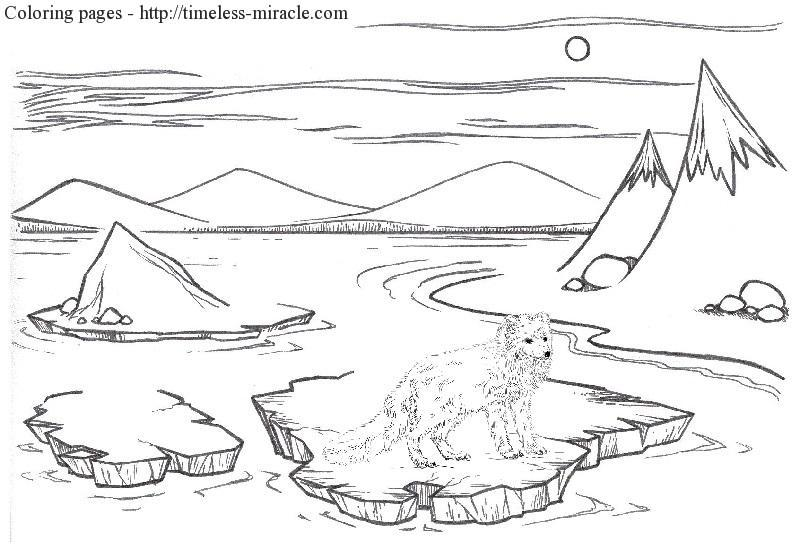 arctic fox coloring page timeless. Black Bedroom Furniture Sets. Home Design Ideas
