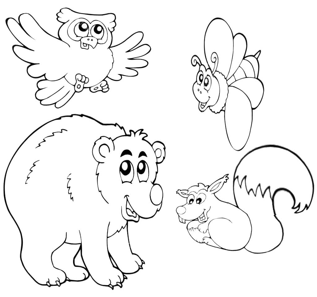 Coloring animals