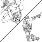 Spiderman coloring page for kids